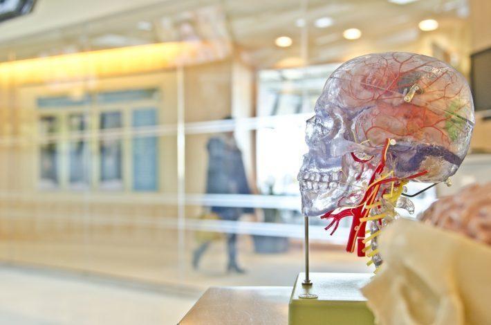 Наш мозг обманывает нас: 7 основных уловок