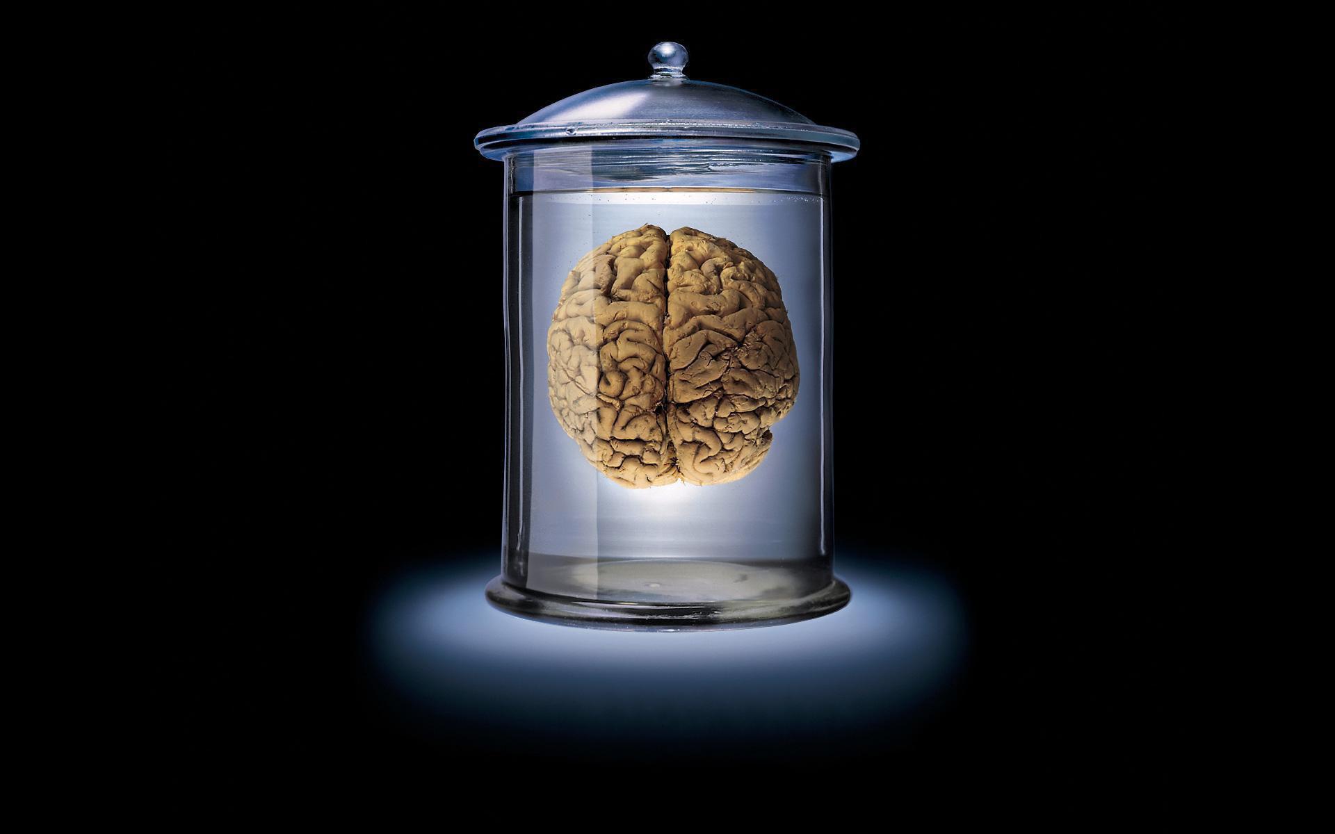 Мозги не купишь? Уже не актуально!