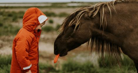 Что общего у детей и животных?