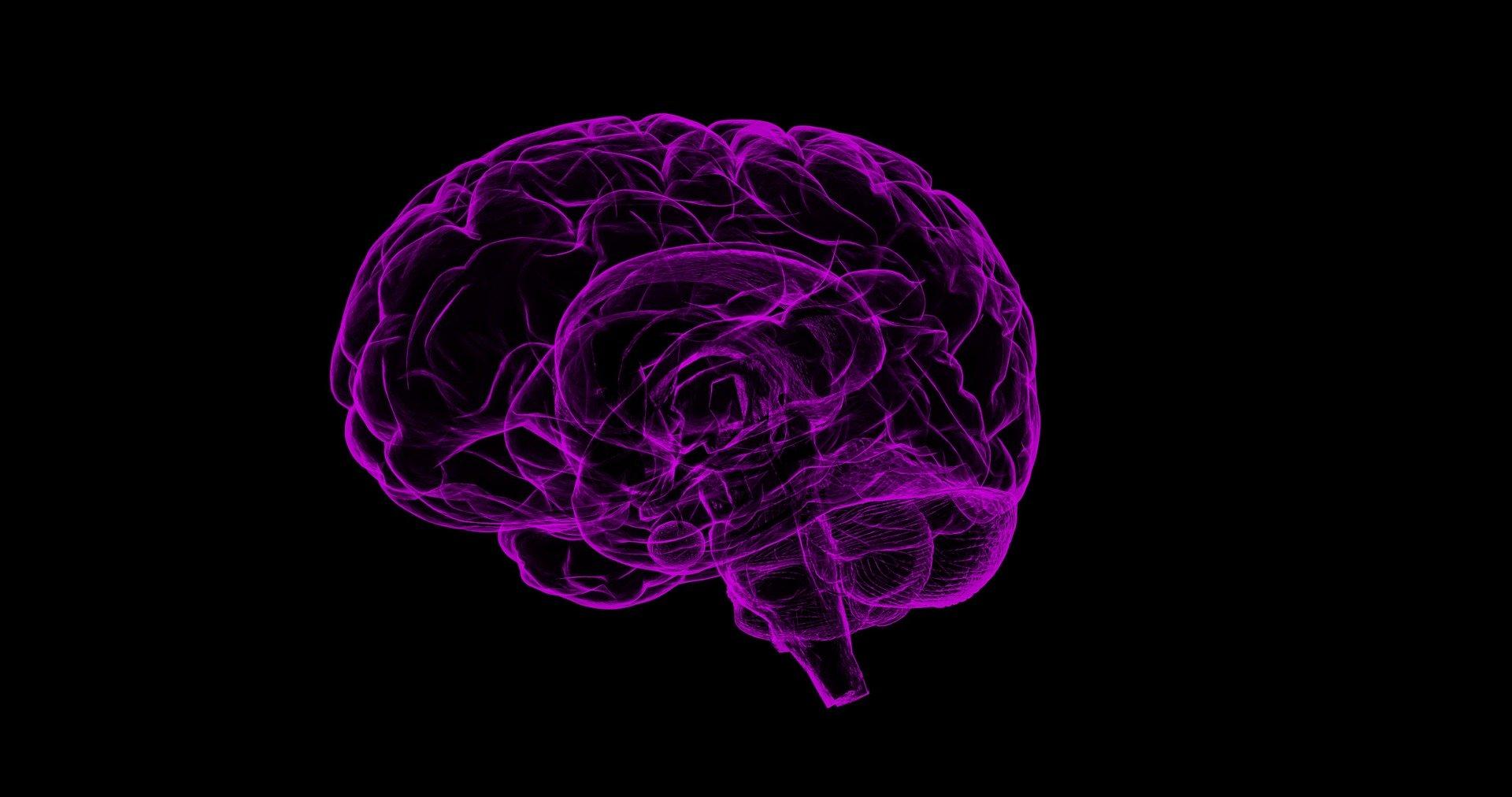 Почему изучение мозга оказалось не таким полезным?