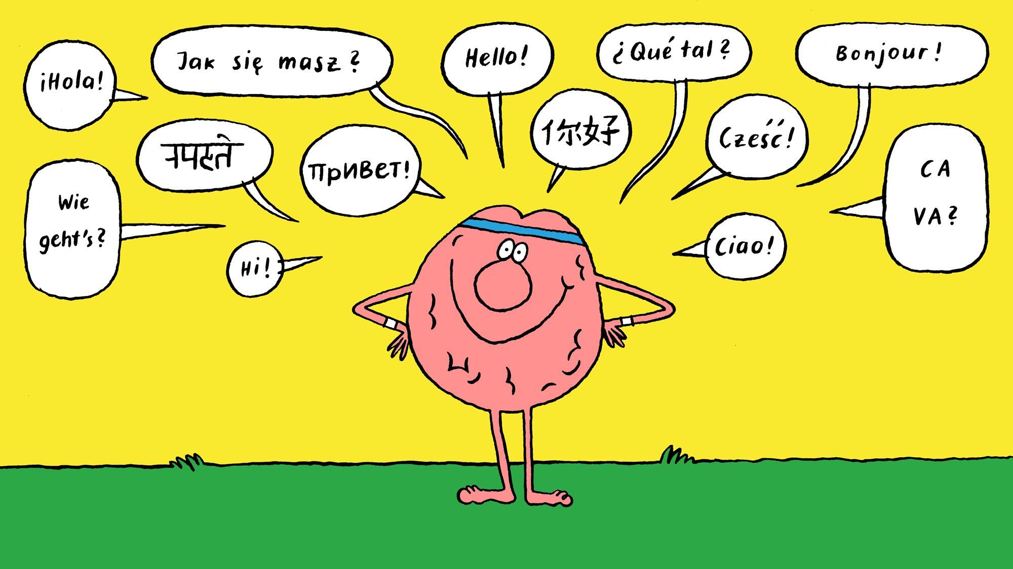 Владение иностранным языком и объем кратковременной памяти: какова взаимосвязь?