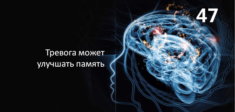 Тревожность может улучшать память
