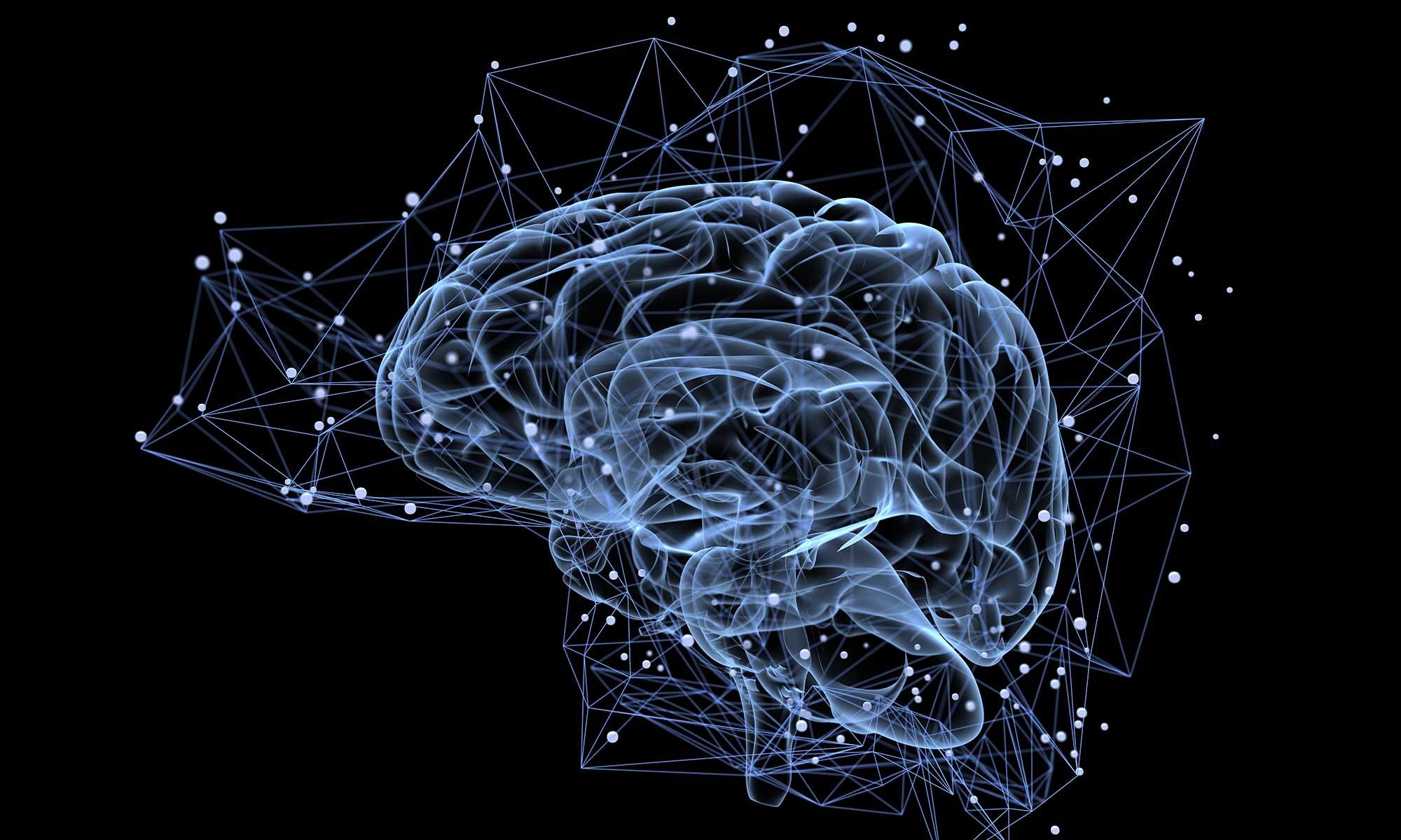 Что такое зеркальные нейроны?
