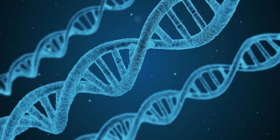 Будущее искусственного оплодотворения и генной модификации