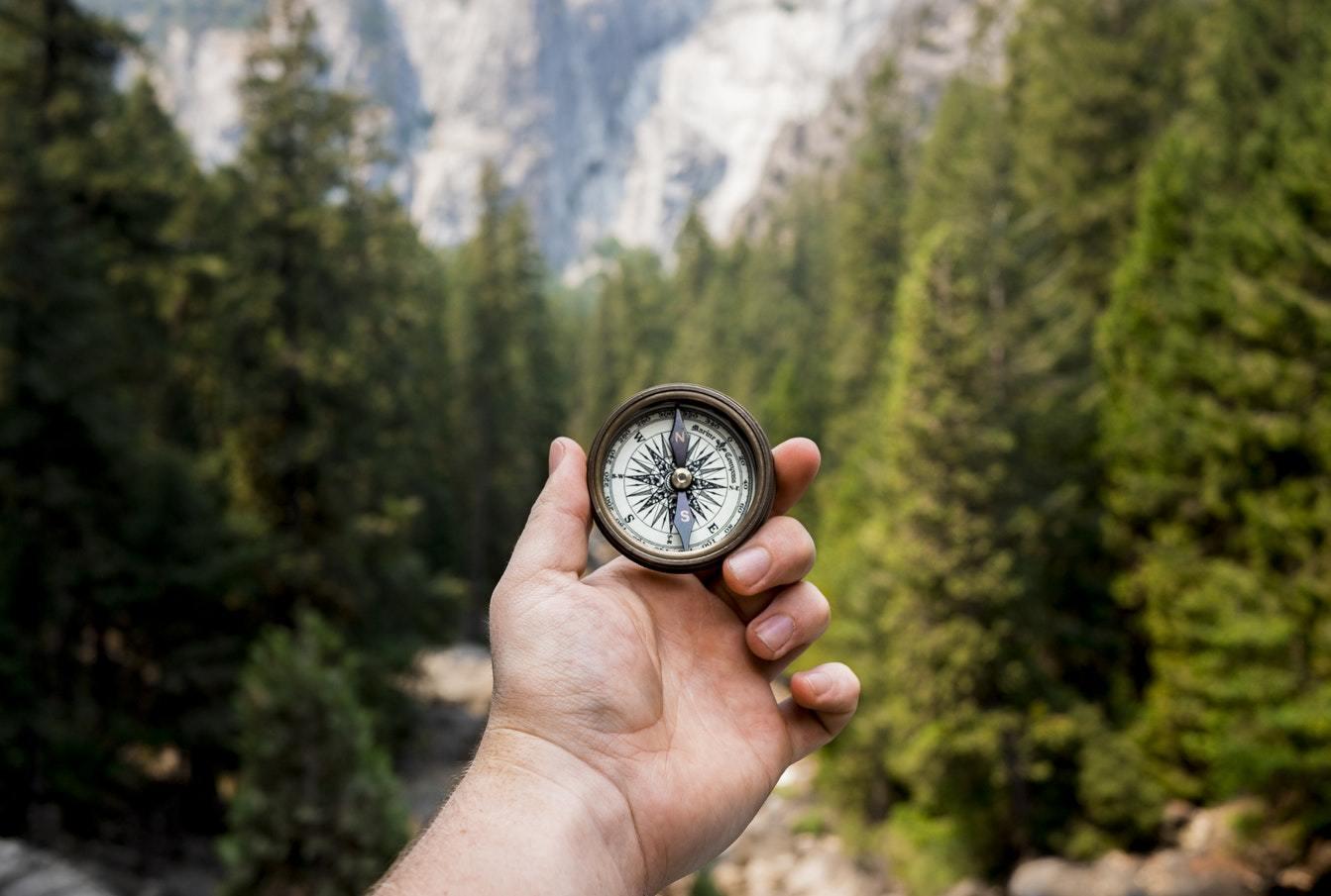 Терапия или коучинг: разница имеет значение?